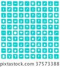 37573388