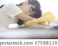 小學生 教育 學費 37588110