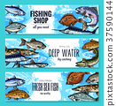 Vector sketch banners of fish for fishing shop 37590144