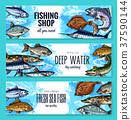 钓鱼 捕鱼 鱼 37590144