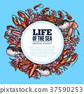 Vector poster sea life ocean fish sketch animals 37590253
