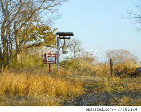 Yanaka village ruins 37591124
