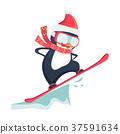 snow, penguin, snowboard 37591634
