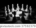 White Chess in Spotlight Surround on Chess Board 37592379