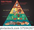 食物 食品 金字塔 37594267