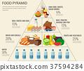 食物 食品 金字塔 37594284