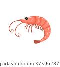 海鲜 对虾 虾 37596287