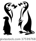 meerkat vector outline and silhouette 37599768