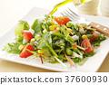 沙拉 沙律 蔬菜 37600930