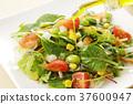 沙拉 沙律 蔬菜 37600947