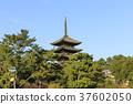 나라현 · 고후 · 오층탑 37602050