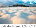 日本湘南 白雪皚皚 雪景 37607219