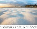 日本湘南 白雪皚皚 雪景 37607220