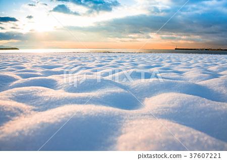 日本湘南 白雪皚皚 雪景 37607221