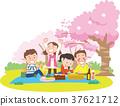 樱花 樱桃树 朋友 37621712