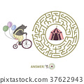 maze, vector, bear 37622943