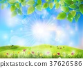 Spring landscape with house on a hill and flower f 37626586