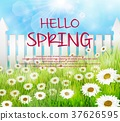 Spring background with wooden fence and daisies fl 37626595