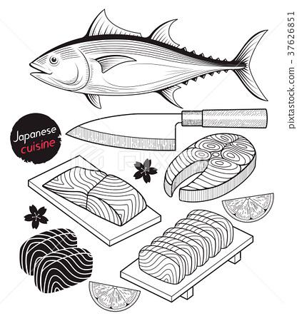 Salmon fish meat. Japan food doodle hand drawn. 37626851