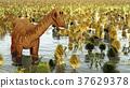 green animal prehistoric 37629378