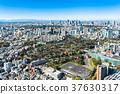 tokyo, shinjuku subcenter, shinjuku 37630317