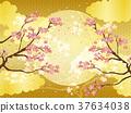 櫻花 櫻 賞櫻 37634038