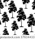 Acacia Trees Seamless 37634433