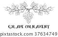 Grapes Floral Ornament 37634749