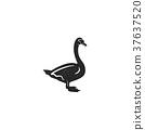 Swan silhouette shape. Vintage hand drawn wild 37637520