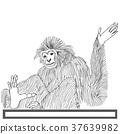 Monkey langur hand drawn on white background 37639982