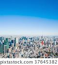 東京塔和城市景觀 37645382