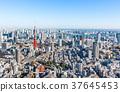 東京鐵塔 37645453