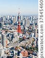 東京鐵塔 37645460