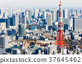 東京鐵塔 37645462