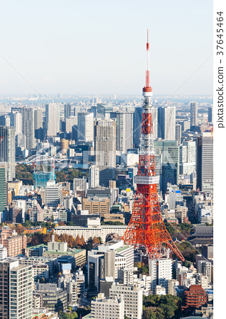 東京鐵塔 37645464