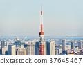 東京鐵塔 37645467