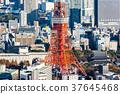 東京鐵塔 37645468
