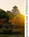 Osaka castle landmark in autumn for tourist. 37646252