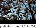 Osaka castle landmark in autumn for tourist. 37646254
