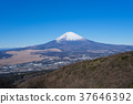 富士山 藍天 積雪 37646392
