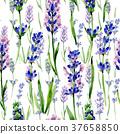 Wildflower lavender flower pattern in a watercolor 37658850