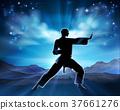karate, silhouette, man 37661276