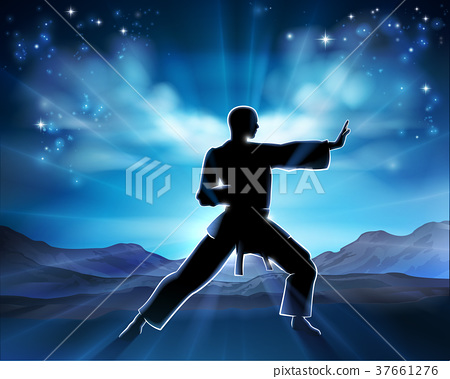 Karate Kung Fu Man Silhouette Concept 37661276