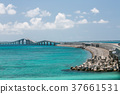 이라부 대교, 여름, 바다 37661531