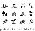 agriculture, gardening, icons 37667312