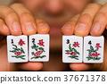 季节 春夏秋冬 four seasons 时节 时间 麻将 Mahjong 麻雀 四季 spring 37671378
