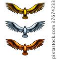 Three Metal Hawks 37674233