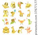 cute animals set 37677177