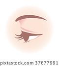 Women's eyes 37677991