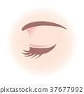 Women's eyes 37677992